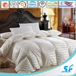 100% Silk Duvet for 5 Star Hotel (SFM-15-095) pictures & photos