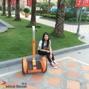 Wind Rover Adult Two Wheel Self Balancing Kick Scooter pictures & photos