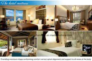 USA 4star Hotel Leather Bed pictures & photos