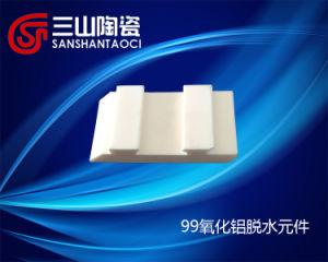 99 Alumina Ceramics Dewatering Element (SSTC0074) pictures & photos