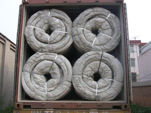 Hot Dipped Galvanized Concertina Razor Wire / Barbed Wire pictures & photos