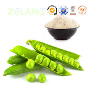 Natural and High Quality Superfood 80% Pea Protein