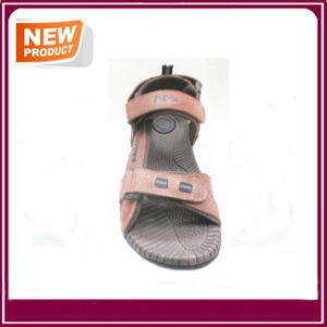 New Fashion Sandal Shoes for Summer Wholesale pictures & photos