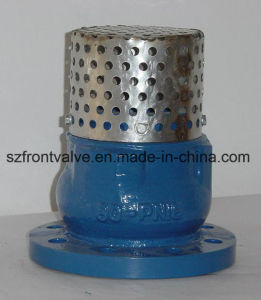 Cast Iron/Ductile Iron Foot Valve with Ss Screen pictures & photos