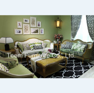 Fresh Siut Sofa Sets Home Furniture Sofa pictures & photos