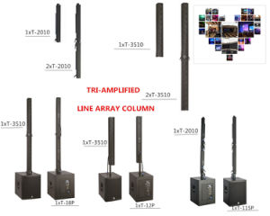 Latest Hot Sell Column System \Club Sound \Home Speakers Self Powered pictures & photos