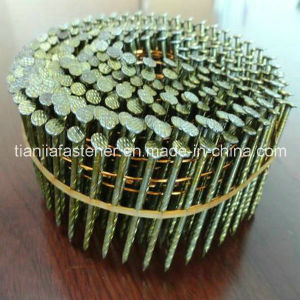 Ring Shank/Screw Shank/Galvanization/Paint Coated Coil Nail