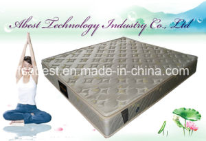 Promotional Bonnell Spring Queen Bed Mattress ABS-2918 pictures & photos