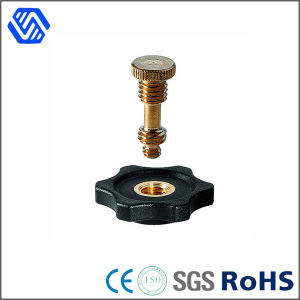 Furniture Hardware Copper Brass Bolt Manufacturer Customized Bolt Nut pictures & photos