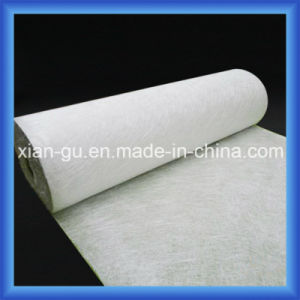 Fiberglass Mat/Fiberglass Chopped Strand Mat/Emulsion or Powder Bonded pictures & photos