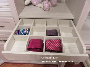 Walk-in Customized Made Wardrobe Design (ZH-5024) pictures & photos