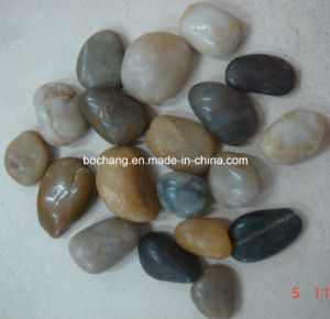 Natural Pebble Mosaic Stone for Garden Deroration pictures & photos
