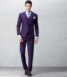 Pure Wool Formal Men Dress Suit Mens Slim Fit Suit pictures & photos