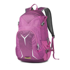 Pink School Backpack Cool Mesh Backpacks Sh-16010519 pictures & photos