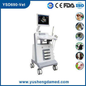 Horse Sheep Cow Veterinary Use Color Dopler Ultrasound Scanner pictures & photos