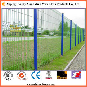 Antirot Powder-Coat Double Wire Garden Fence (XM-wire2) pictures & photos