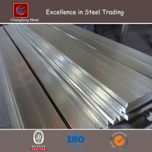 Stainless Steel Flats Bar (CZ-F65) pictures & photos
