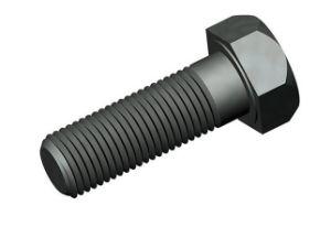 Brass Nut / Fastener / Hardware / Spare Parts / Screw pictures & photos