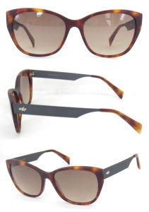 Italian Acetate Sunglasses Manufacturer High Quality pictures & photos