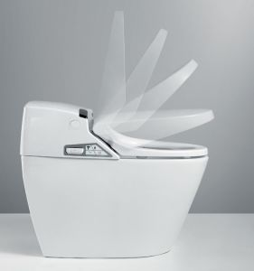 Toilet Seat Cover Closed Rotary Damper Buffer pictures & photos