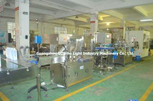 Automatic Bottle Liquid Bleach Filler for Various Acid & Alkali pictures & photos