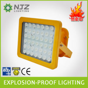 Ce, RoHS, Atex LED Gas Station Light 20-150W, LED Floodlight pictures & photos
