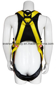 Full Body Harness with Two-Point Fixed Mode and EVA Protection Pad (EW0300H) pictures & photos