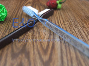 Travel Plastic Transparent Disposable Toothbrush pictures & photos