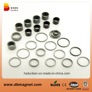 Motor Injection Bonded Ferrite Ring Magnet pictures & photos