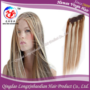 100% Human Hair Weave Silk Straight Brazilian Remy Hair with Piano Color (HSTB-A053)