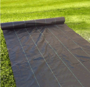 Supply Black and Green PP Woven Fabric Weed Barrier Weed Control Environmentally Friendly Weedbarrier and Groundcover pictures & photos