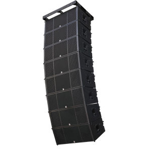 Dual 12 Inch Professional Neodymium Line Array pictures & photos