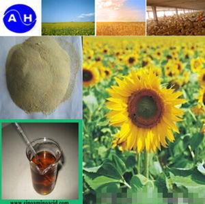 Plant Source Amino Acid Compound Plant Nutrient Liquid Fertilizer pictures & photos