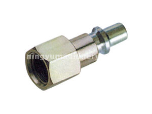Euro Type Quick Connector for Rubber Air Hose pictures & photos