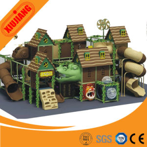 More Than 10 Years Experience Indoor Play Structures for Sale pictures & photos