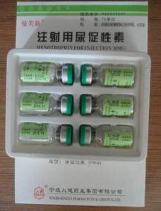 HMG, Steroid Hormone HMG, Human Menotrophins Gonadotrophin, HMG75iu pictures & photos