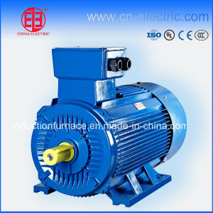 Ie2/Ie3 High Efficiencey Three Phase Electric Induction Motor pictures & photos
