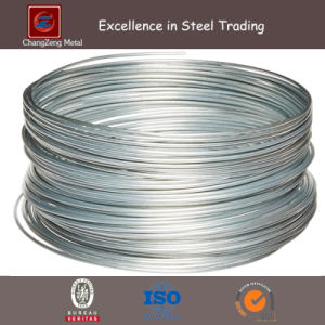 Carbon Spring Steel Wire for Nail (CZ-W51) pictures & photos