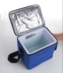 Electronic Mini Fridge 6liter DC12V, with Cooling and Warming for Car, Boat Outdoor Activity Use pictures & photos