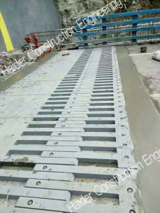 Large Movement Finger Expansion Joint pictures & photos