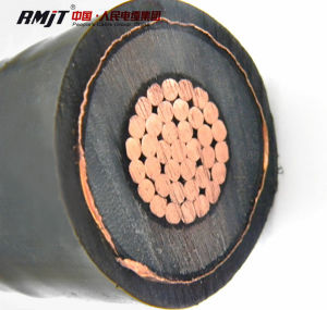 N2xs (FL) 2y Armoured Single Core Power Cable pictures & photos