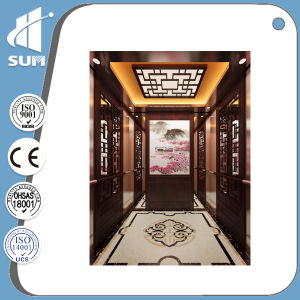 Passenger Elevator with Etching Mirror Stainless Steel Cabin pictures & photos
