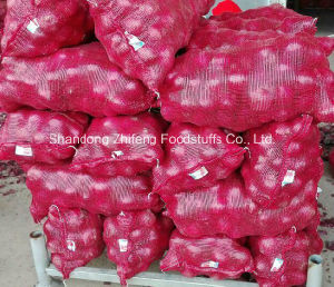 2016 New Crop Fresh Red Onion with High Quality pictures & photos