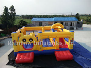 2016 Crazy Design Popular Cartoon Inflatable Bouncer for Kids pictures & photos
