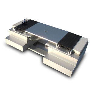 Professional Standard Expansion Joint Types for Project pictures & photos