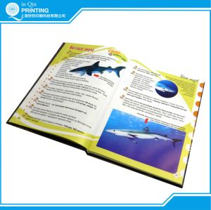 Book Catalogue Magazine Printing Manufacturer pictures & photos