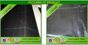 PP and PE Black and Green Ground Mat pictures & photos