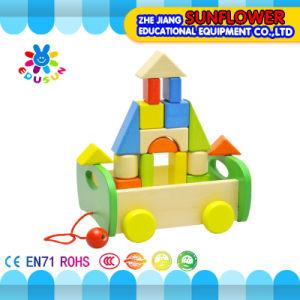 Children Wooden Desktop Toys Developmental Toys Building Blocks Wooden Puzzle (XYH-JMM10007)