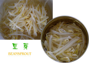 425ml Canned Bean Sprout From China pictures & photos