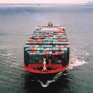 The All Kinds of Logistics Services in Container Filling pictures & photos